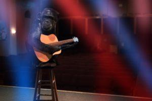 ギターを大人が習うなら?音楽教室を選ぶポイント!